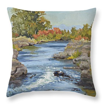 Early Morning In Idaho Throw Pillow