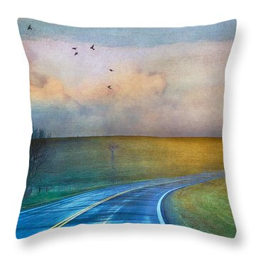 Early Morning Kansas Two-lane Highway Throw Pillow