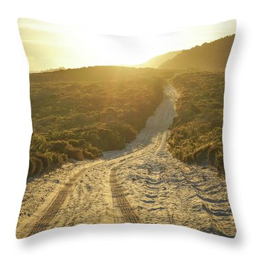Early Morning Light On 4wd Sand Track Throw Pillow