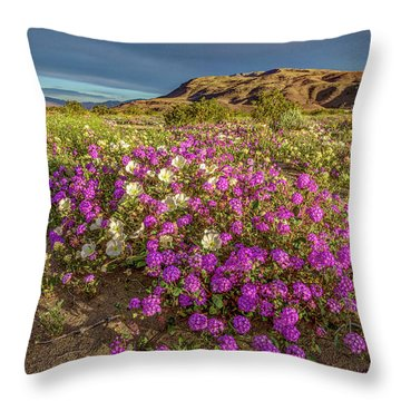 Throw Pillow featuring the photograph Early Morning Light Super Bloom by Peter Tellone