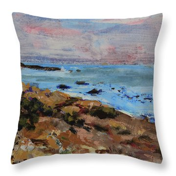 Throw Pillow featuring the painting Early Morning Low Tide by Walter Fahmy