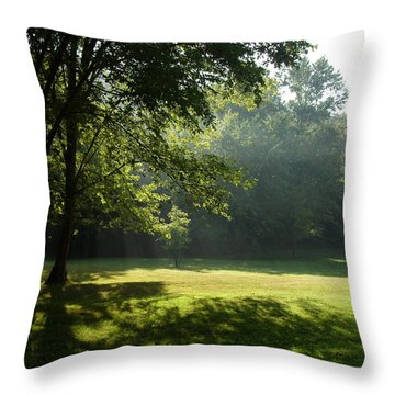 Early Morning Meadow Throw Pillow by Cynthia Lassiter