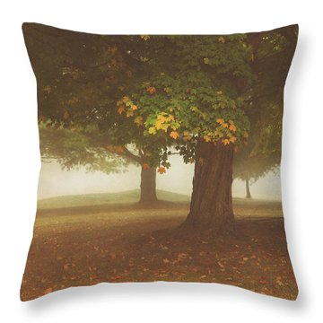 Early Morning Mist In The Poconos Throw Pillow