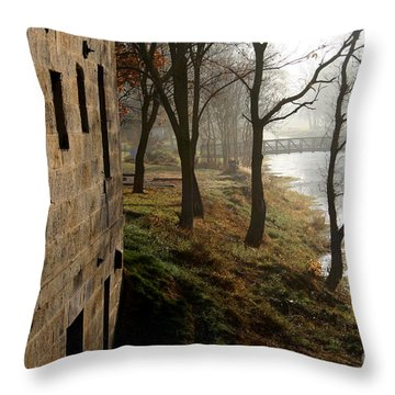 Throw Pillow featuring the photograph Early Morning Mist  by Paula Guttilla