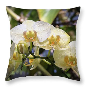 Early Morning Orchids Throw Pillow