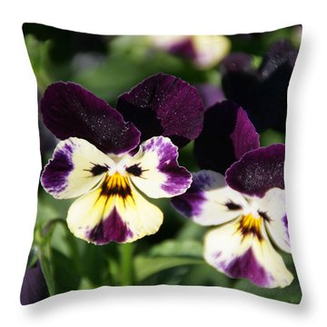 Early Morning Pansies Throw Pillow