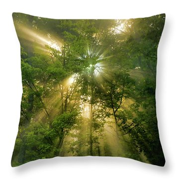 Early Morning Peace Throw Pillow by Christina Rollo