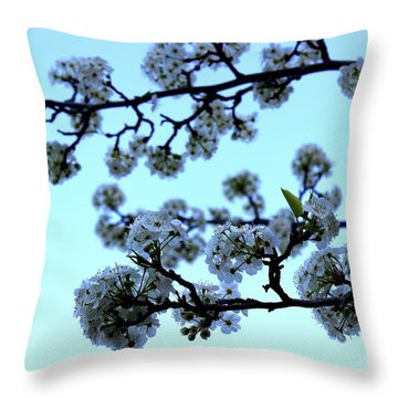 Early Morning Pear Blossom Throw Pillow