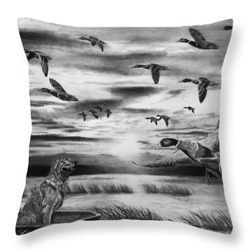 Early Morning Throw Pillow by Peter Piatt