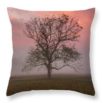 Early Morning Promises Throw Pillow