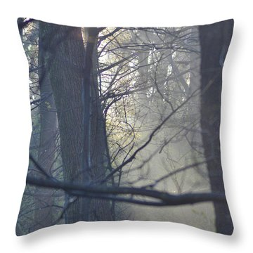 Early Morning Rays Throw Pillow by Bill Cannon