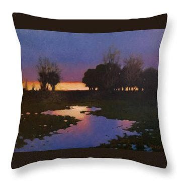 Early Morning Rice Fields Throw Pillow