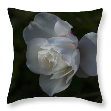 Early Morning Rose Throw Pillow