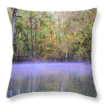 Early Morning Springs Throw Pillow