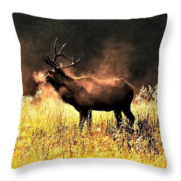 Early Morning Steam Throw Pillow