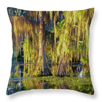 Early Morning Swampscape Throw Pillow