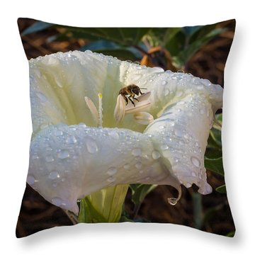 Early Morning Visit Throw Pillow