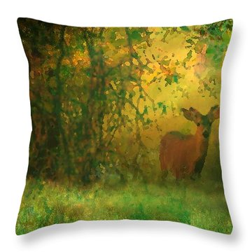 Early Morning Visitor Throw Pillow