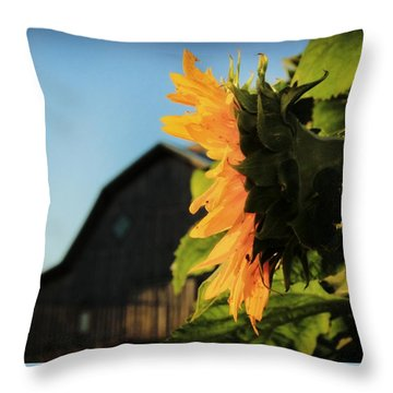 Throw Pillow featuring the photograph Early One Morning by Chris Berry