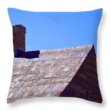 Early Recycling Throw Pillow