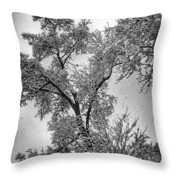 Throw Pillow featuring the photograph Early Snow by Steven Huszar