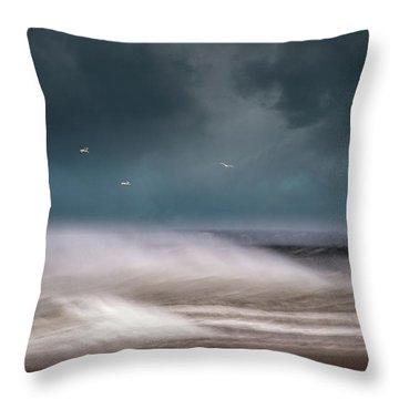Early Spring At Nauset Beach Throw Pillow