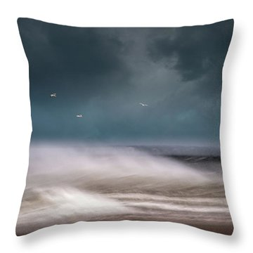 Early Spring At Nauset Beach Throw Pillow