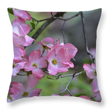 Early Spring Color Throw Pillow