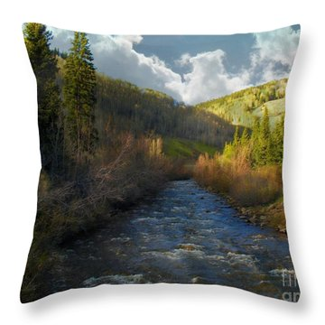 Early Spring Delores River Throw Pillow by Annie Gibbons