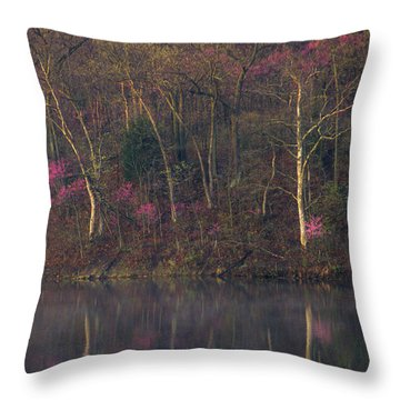 Early Spring Lake Shore Throw Pillow