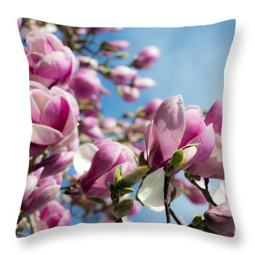 Throw Pillow featuring the photograph Early Spring Magnolia by Angela DeFrias