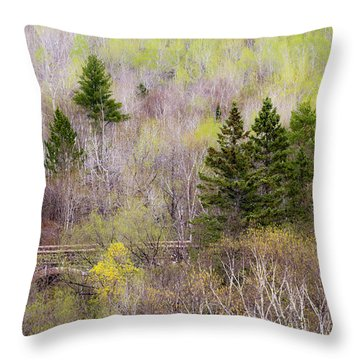 Throw Pillow featuring the photograph Early Spring Palette by Mary Amerman