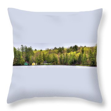 Early Spring Panorama Throw Pillow by David Patterson