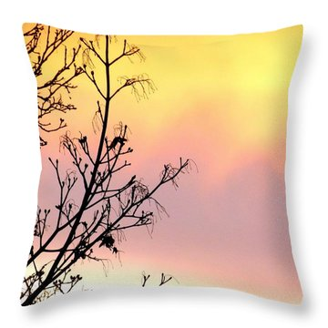 Throw Pillow featuring the photograph Early Spring Sunset by Will Borden