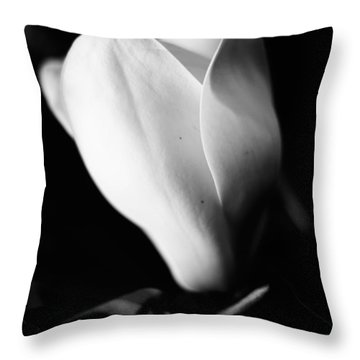 Early Stages Throw Pillow