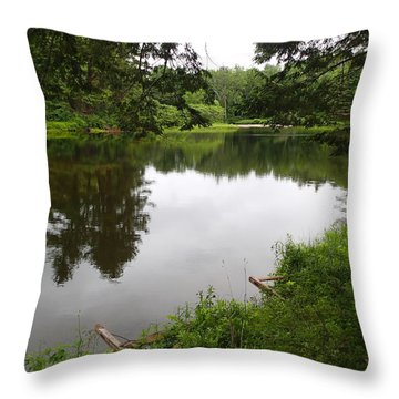 Early Summer In Nh Throw Pillow by Lois Lepisto
