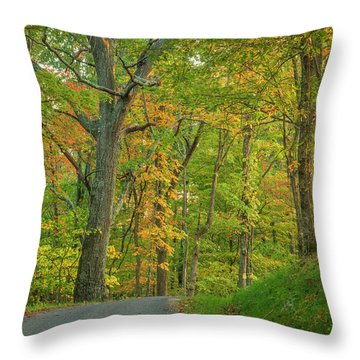 Throw Pillow featuring the photograph Early Sun by David Waldrop