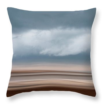 Early Winter At Sandy Neck Throw Pillow