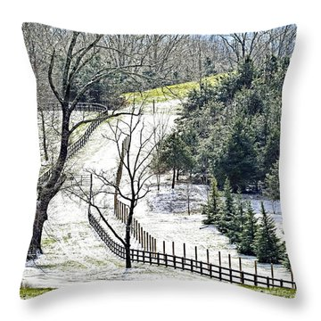 Early Winter Pasture Throw Pillow