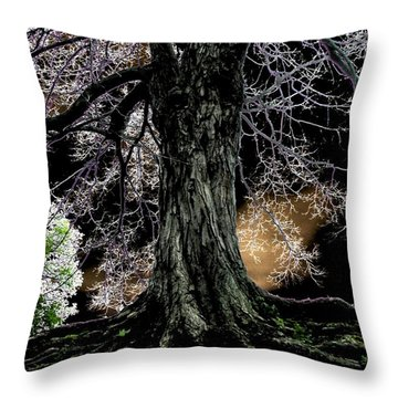 Earth Bound Throw Pillow