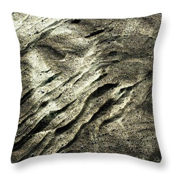 Throw Pillow featuring the photograph Earth Memories - Sleeping River # 4 by Ed Hall