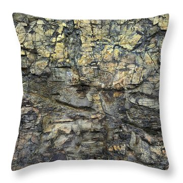 Throw Pillow featuring the photograph Earth Memories - Stone # 6 by Ed Hall