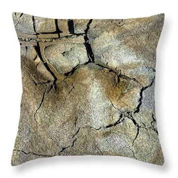 Throw Pillow featuring the photograph Earth Memories-thirsty Earth by Ed Hall