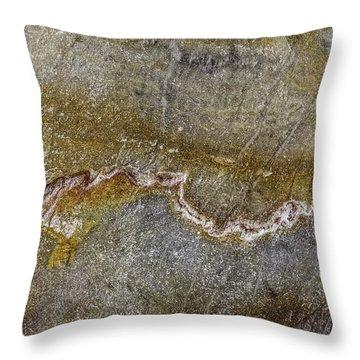 Earth Portrait 000-204 Throw Pillow