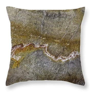 Earth Portrait 000-204 Throw Pillow