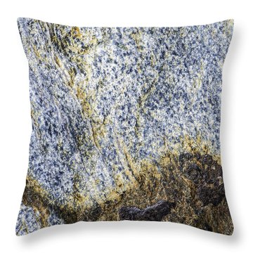 Earth Portrait 001-035 Throw Pillow