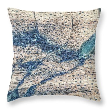 Throw Pillow featuring the photograph Earth Portrait 001-118 by David Waldrop