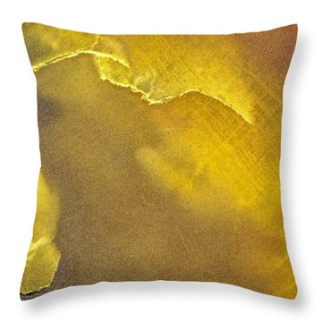 Earth Portrait 001-120 Throw Pillow