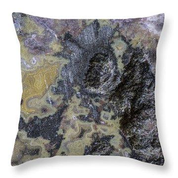 Earth Portrait 001-168 Throw Pillow