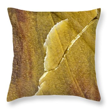Earth Portrait 001-66 Throw Pillow